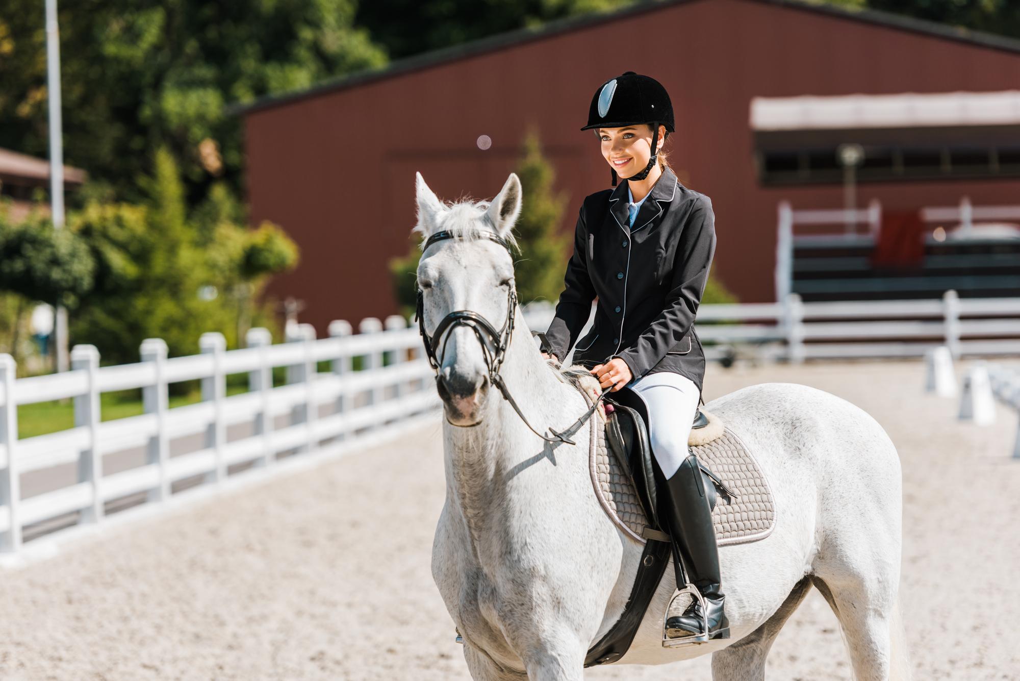 Rytter og hest